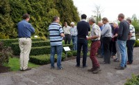 2015-05-08 Keuring Ilex crenata 'Icoprins11' (DARK GREEN)