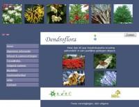 zoekvenster Dendroflora